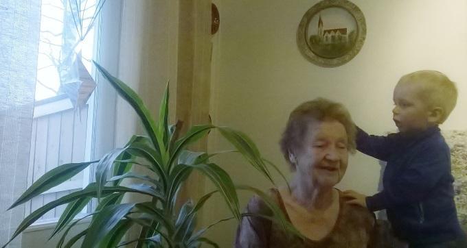 Eeva Huhtala Säästi Krassinsiemeniä Myös Kukkapenkkiin