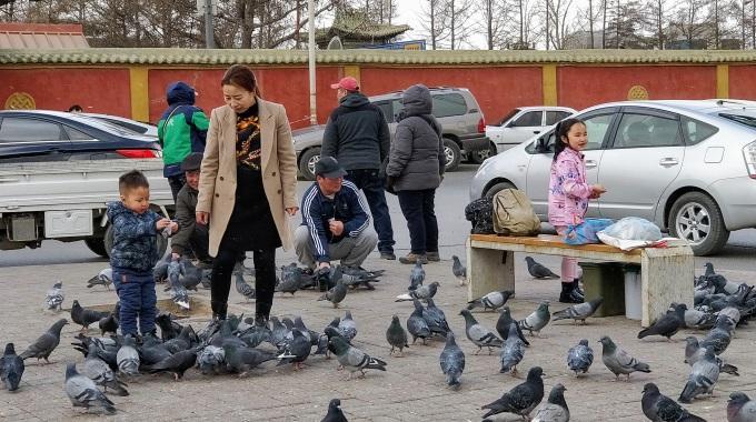 Ulaanbaatar Ihmiset Ja Linnut Kuva Sirpa Rissanen