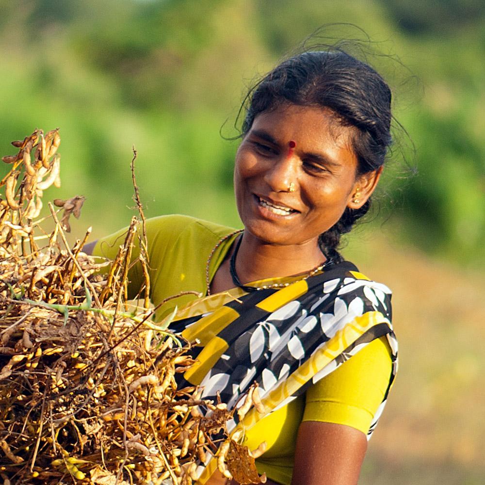 Palautteet Intia Nainen